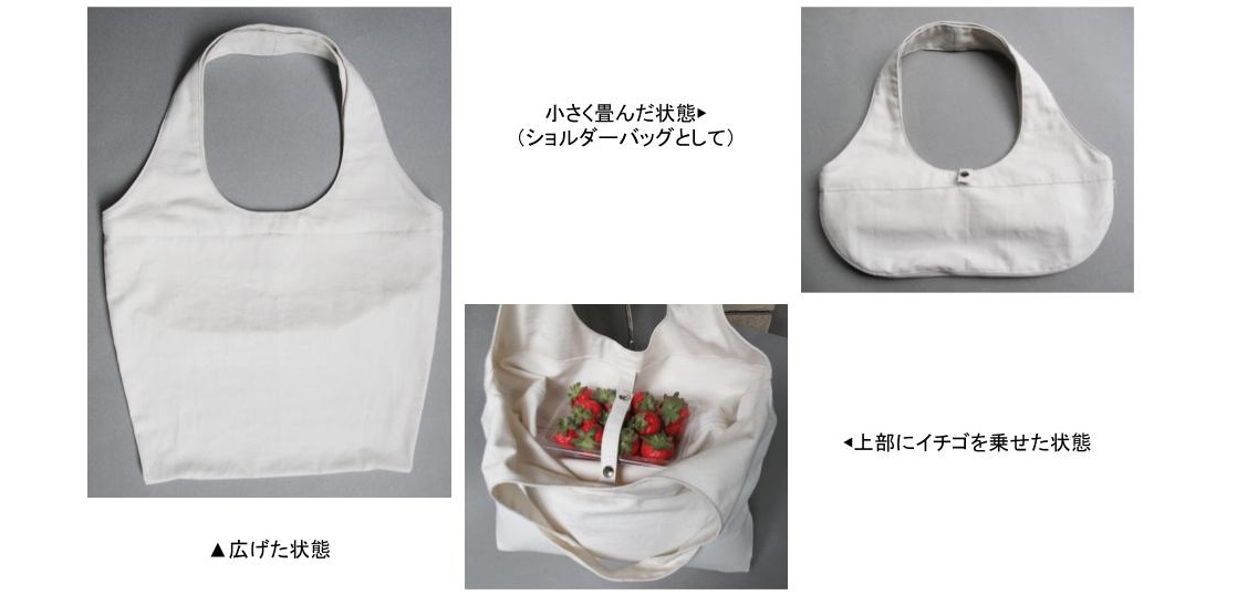 2way_marche_bag